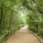 Área_Natural_del_Valle_de_Clamores-CIMG0574